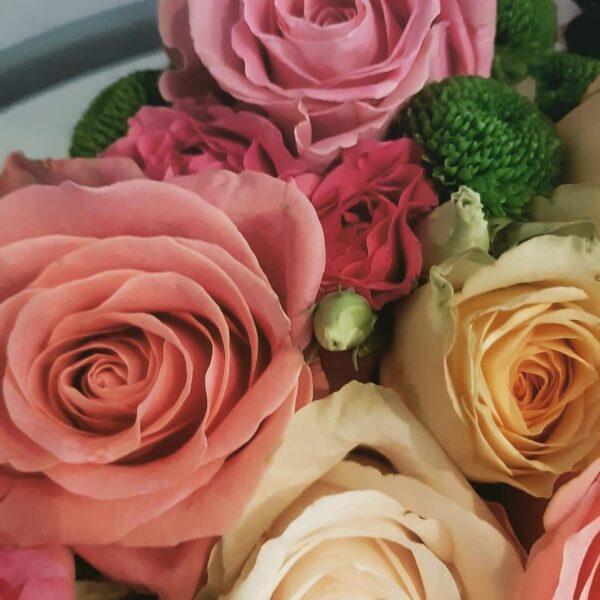 Bež flower box