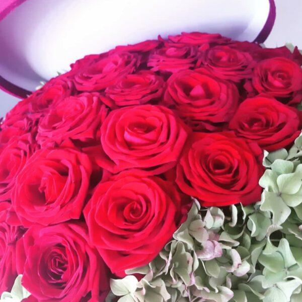 Ruže rozi flower box